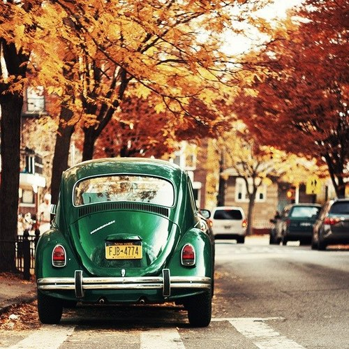 fall_inspiration_car