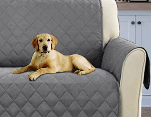 001812 Soluzioni per eliminare i peli di cani e gatti in casa
