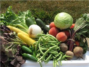 Zero Waste vegetable shopping example