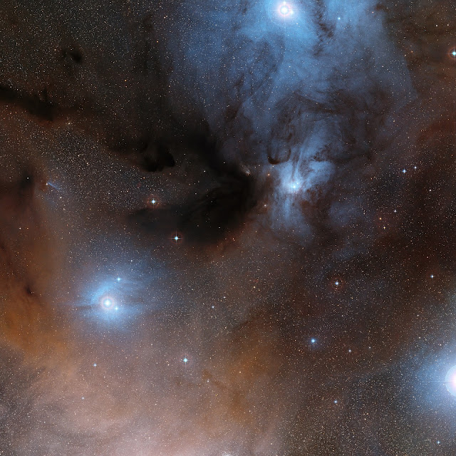 The Rho Ophiuchi star formation region