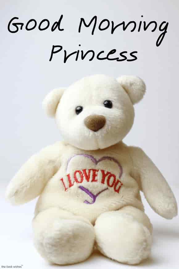 good morning princess with teddy bear