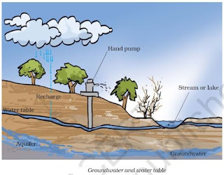 NCERT Solutions for Class 7th: Ch 16 Water: A Precious