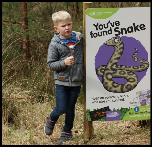 Finding Snake on the Gruffalo trail