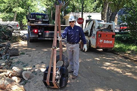 ISA Certified Arborist tree service Roswell Ga