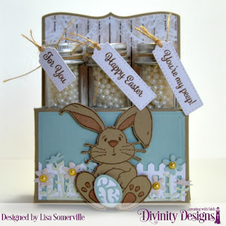 Stamp Sets: NCC Hippity Hoppity, Divinity Designs Test Tube Tag Sentiments 3  Custom Dies: Test Tube Trio, Fence Border, Flower Box Fillers, Easter Eggs, Bunny, Paper Collection: Romantic Roses, Shabby Pastels