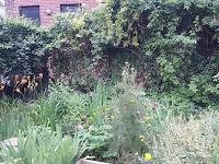 community garden interior