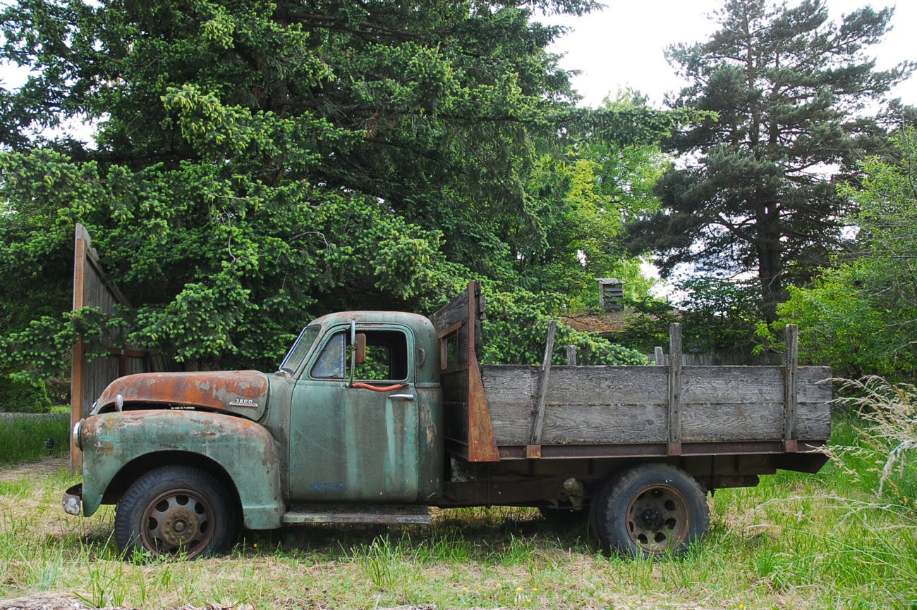 wiring diagram 1979 chevy 1 2 ton truck get free image