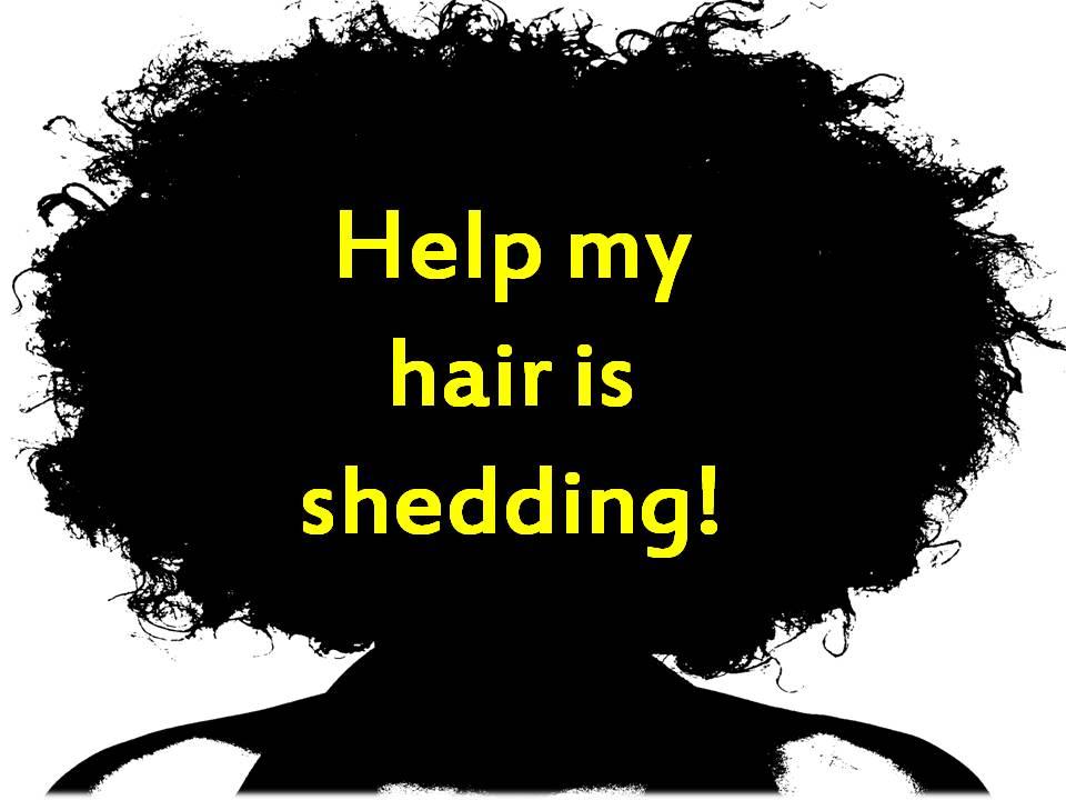 Helpmyhairisshedding Coilyqueens Hair Regimen For Those