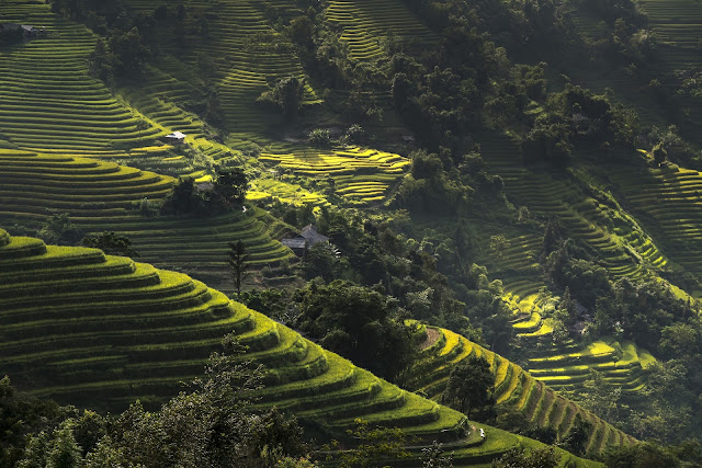 What do you know about Ha Giang?