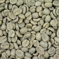 coffee-bean-extract-weight-loss