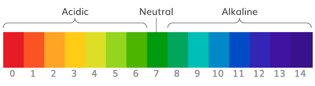ph scale for strip reference