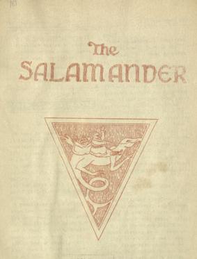 RISD Alumni Francis J. Quirk Salamander Cover