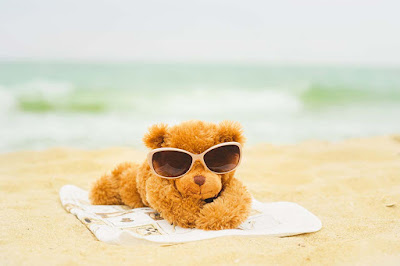 teddy-sleeping-resting-on-the-beach-pics
