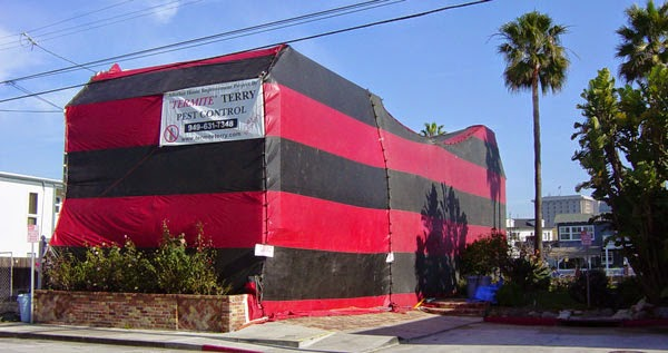 Report from the Florida Zone: Fumigation Tents of Florida