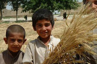 2 Afghani children holding wheat stalks
