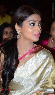 Actress Shriya Saran New Images in Silk Saree at Gautamiputra Satakarni Audio Launch  0017.jpg