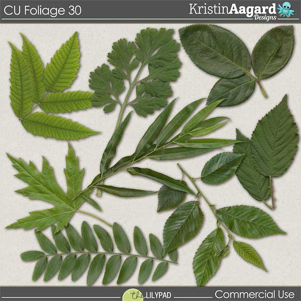 http://the-lilypad.com/store/digital-scrapbooking-cu-foliage-30.html