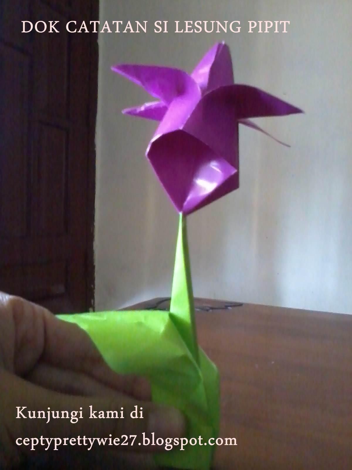 DIY membuat beberapa jenis bunga mawar dari kertas > Do it ... | 1600x1200