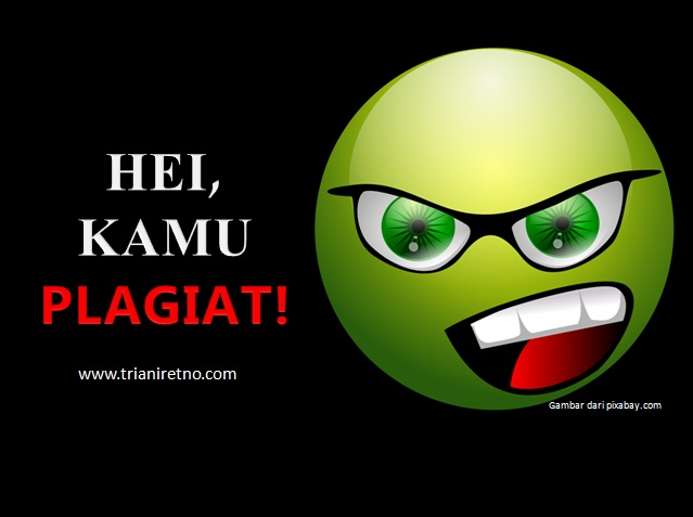 Hei, Kamu Plagiat!