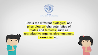 Definisi dan Arti SEKS menurut WHO yang Sesungguhnya