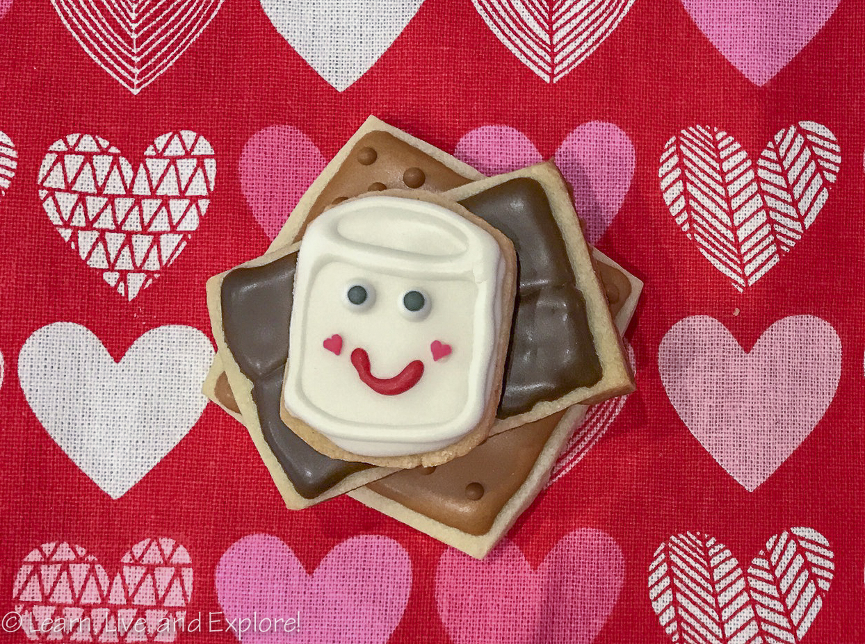 Hey Everyone! I Just Wanted To Share With You Some Of The Fun I Got Up To  This Weekend. Iu0027ve Seen A Lot Of Su0027more Decorated Cookies On Social Media,  ...