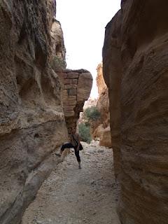 Presa nabatea