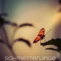 http://isabelle-fotografiert.blogspot.de/2017/04/schmetterlinge.html