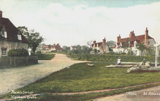 Photograph of Nash's Corner 1900. Trees were stored on the green by Nash Bros. to weather for coffin making