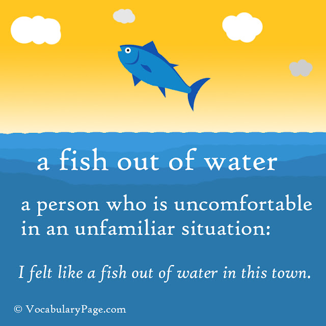 fish out of water idiom