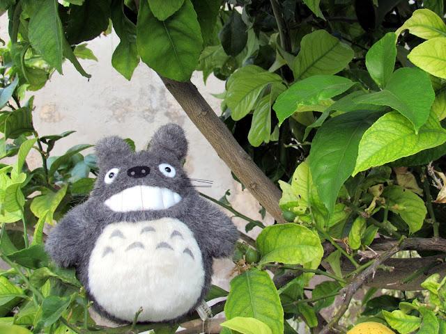 Peluche de Totoro en un árbol