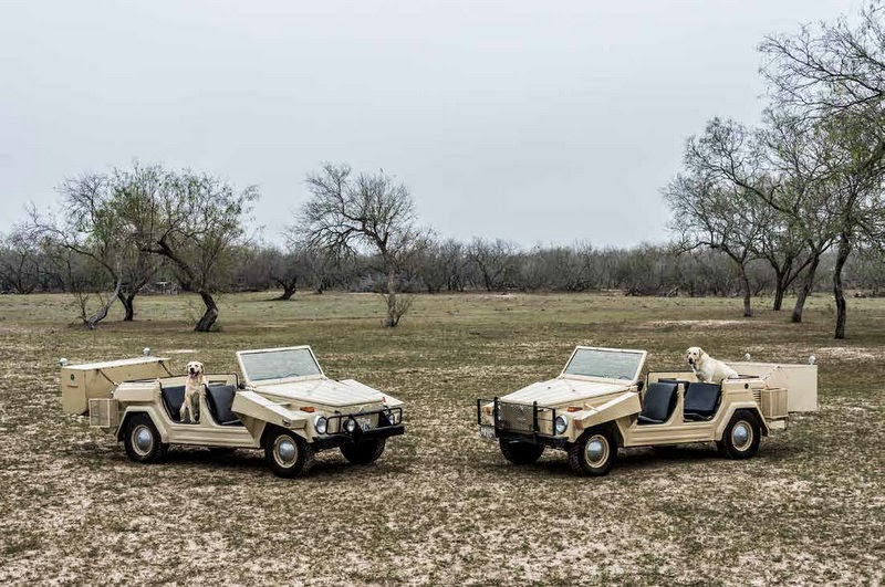 VW Thing Texas quail rig
