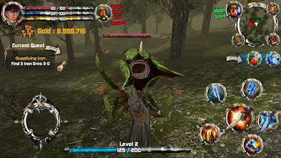 Kingdom Quest Crimson Warden Apk MOD