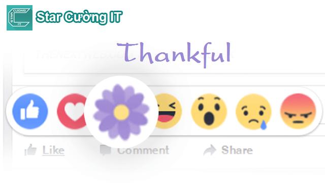 """Facebook có nút reaction """"thả hoa"""", bạn đã biết sử dụng ?"""