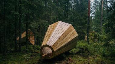 Con arte. Megáfonos gigantes para escuchar el sonido del bosque