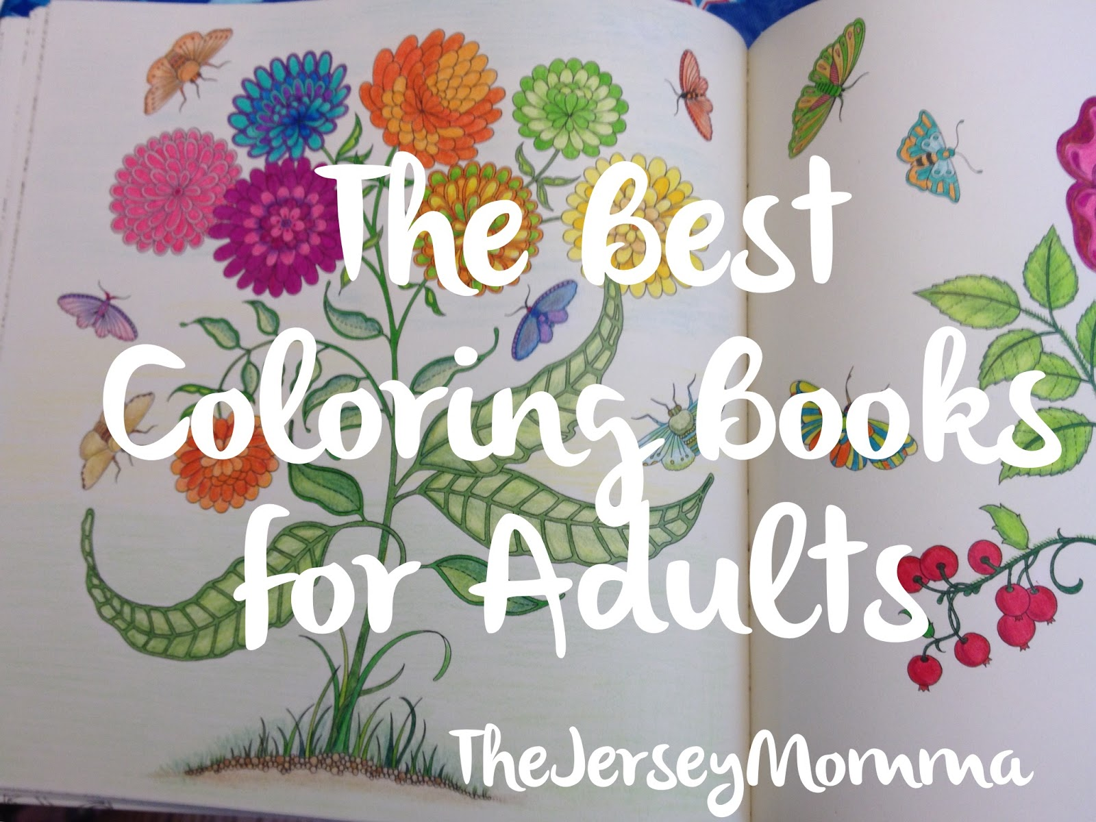 The Best Adult Coloring Books | The Jersey Momma