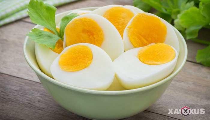 Makanan penambah darah - Telur, makanan penambah darah