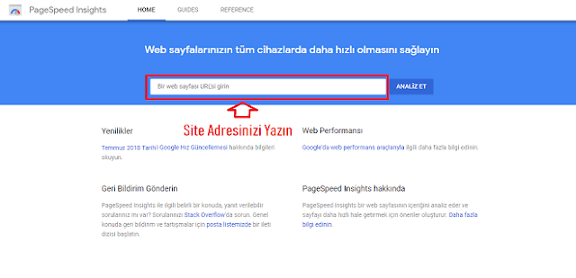 PageSpeed Insights - Google Developers Mobil ve Masustu Hız Testi- Kurgu Gucu