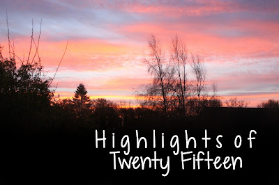 highlights of twenty fifteen, 2015, year review, memories, thegirlinspired
