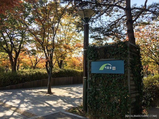Seoul Trip 2016: Day 2 ~ Seoul Forest - One Step at a Time