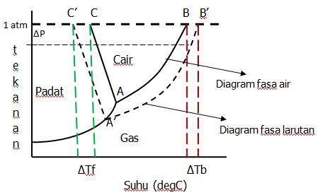 Sifat koligatif larutan kenaikan titik didih dan penurunan titik perhatikanlah diagram fasa air dan larutan berikut avkimia ccuart Images