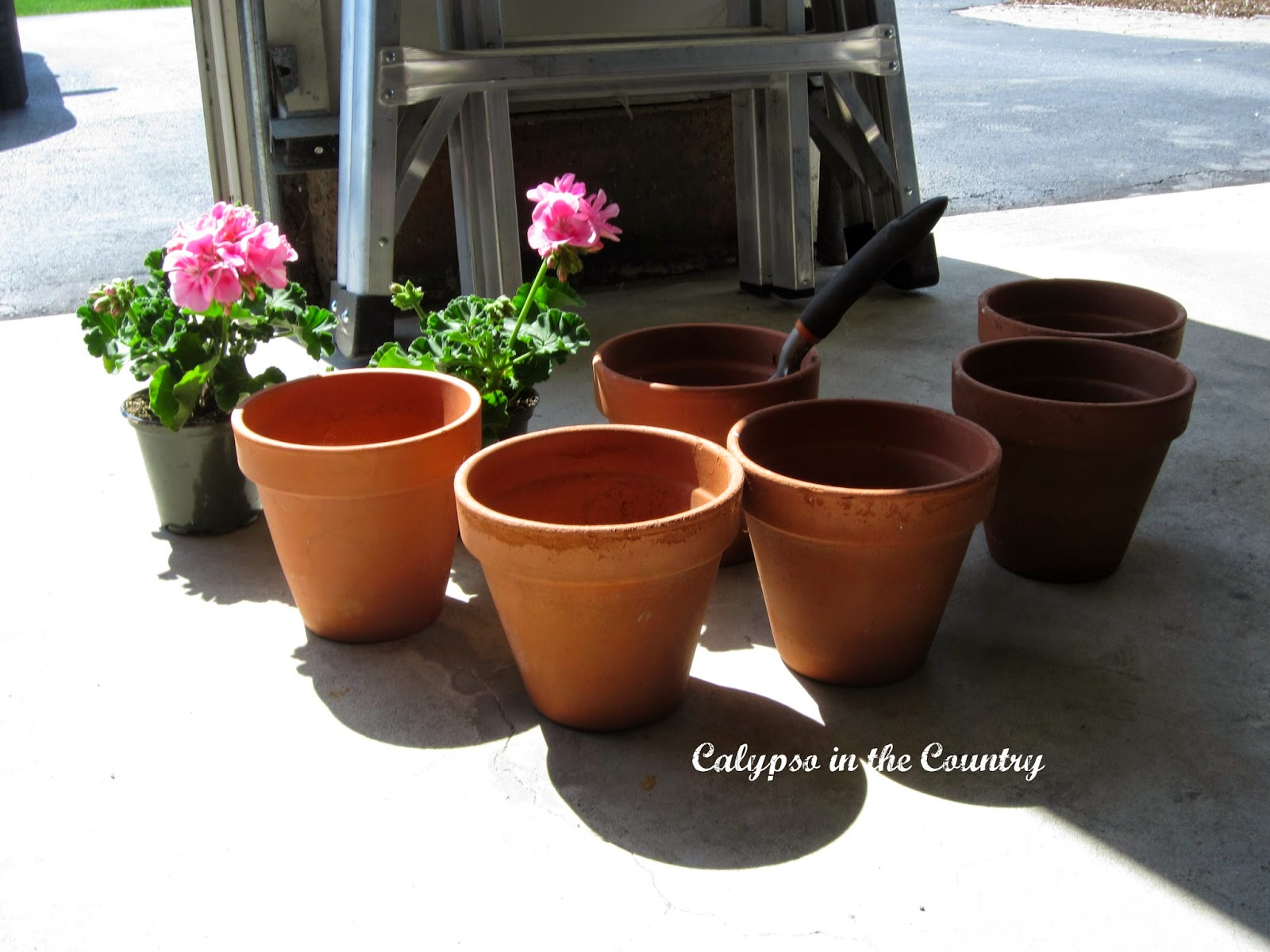 Terra Cotta Pots - Helpful tips for container gardening