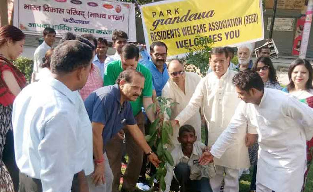 plantation-at-sector-28-b y-rajesh-nagar-sr-bjp-leader-tigaon-faridabad