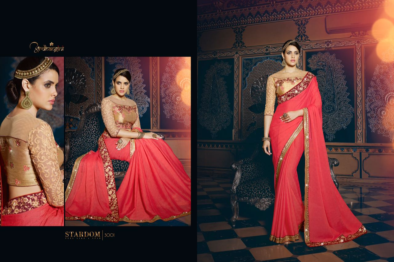 Aardhangini 3001 Series – New Work Saree Catalogue At Wholesale Rate