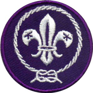 U S  Scouting Service Project Updates: World Crest