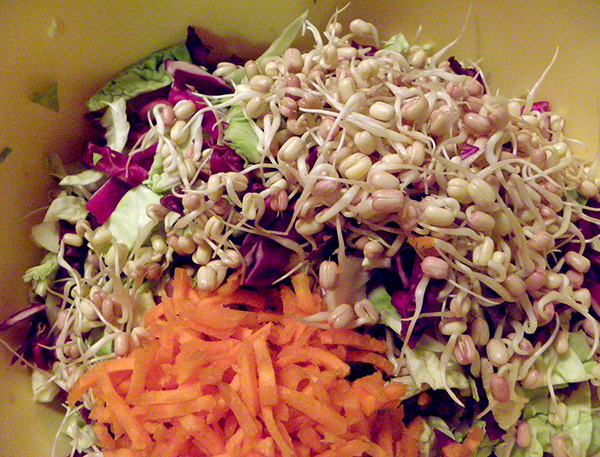 Large Bowl of Cabbage, Sprouts, and Julienned Carrots