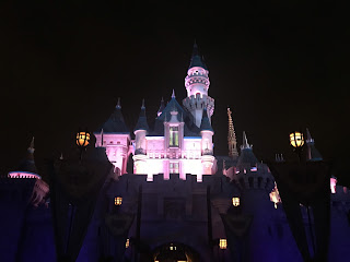 Sleeping Beauty Castle at night