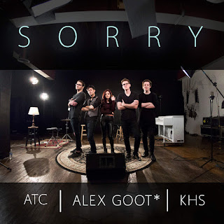 Alex Goot - Sorry (feat. Kurt Hugo Schneider & ATC) on iTunes