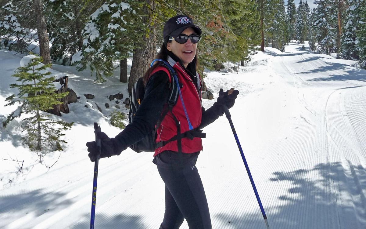 Guide du ski 2019  comparateur et Test Ski  skieurcom