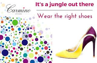 Poarta pantofii potriviti, pantofii Carmine!
