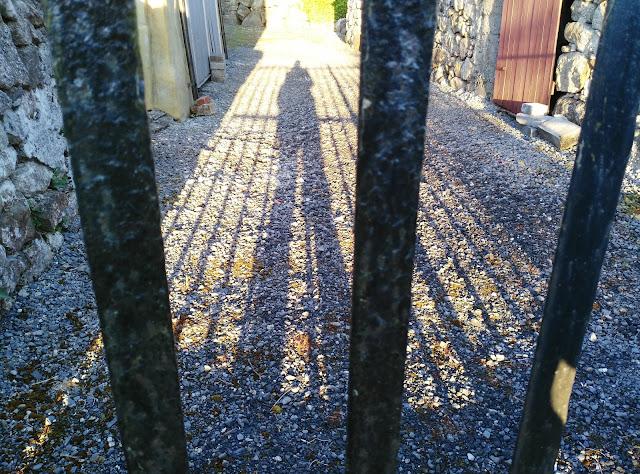 shadow, gate, Moycullen